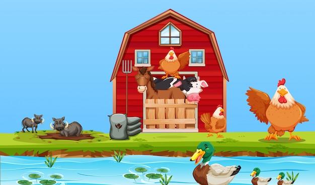 Escena de animales de granja feliz