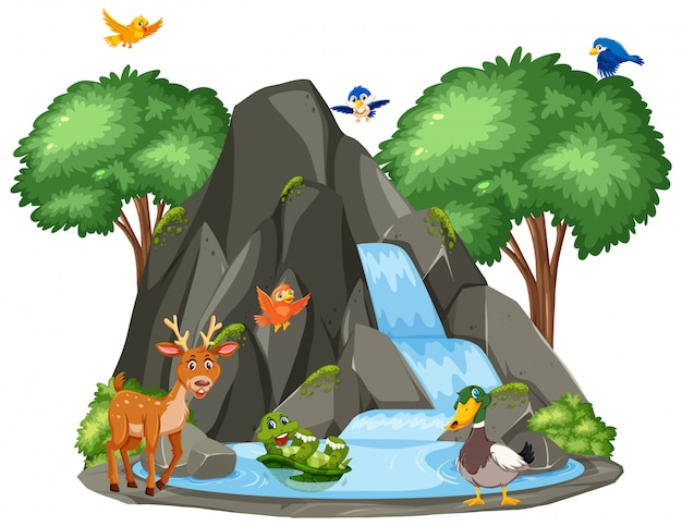 Escena de animales junto a la cascada