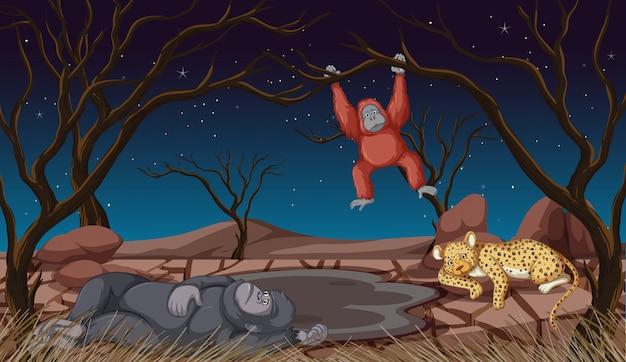Escena con animales en la noche