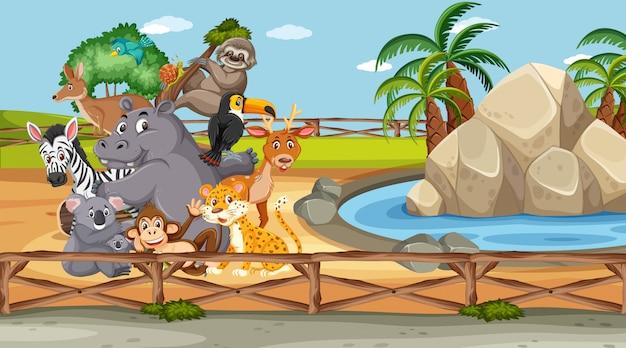 Escena con animales salvajes en el zoológico durante el día