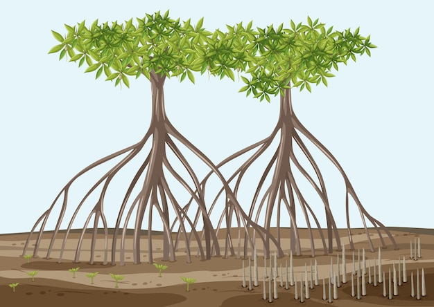 Escena con árboles de mangle en estilo de dibujos animados