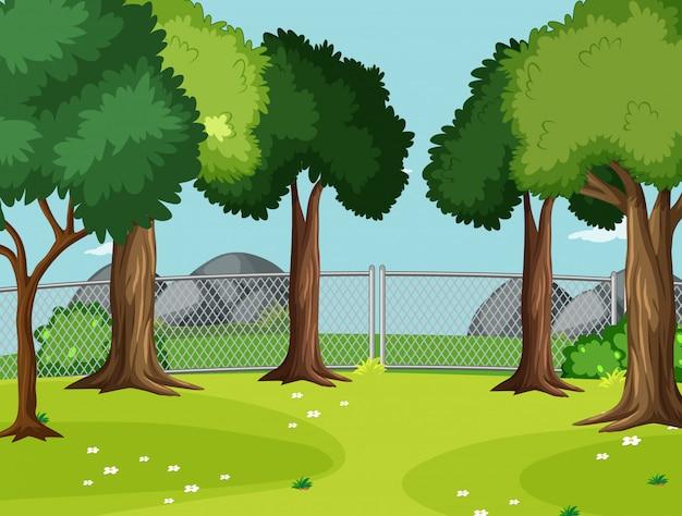Escena en blanco en el parque con grandes árboles.