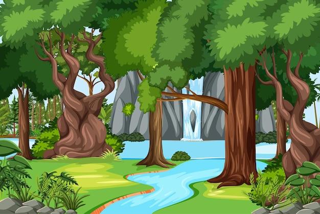 Escena del bosque con cascada y muchos árboles.