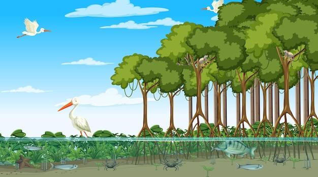 Escena de bosque de manglar durante el día con animales.