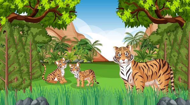 Escena de bosque o selva tropical con familia de tigres.