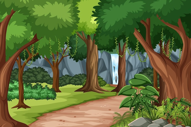 Escena del bosque con pista de senderismo y muchos árboles.