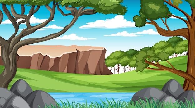 Escena del bosque con varios árboles forestales y acantilado.