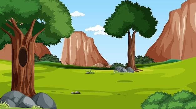 Escena del bosque con varios árboles forestales y fondo de acantilado