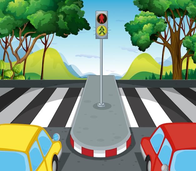 Escena del camino con paso de cebra y autos
