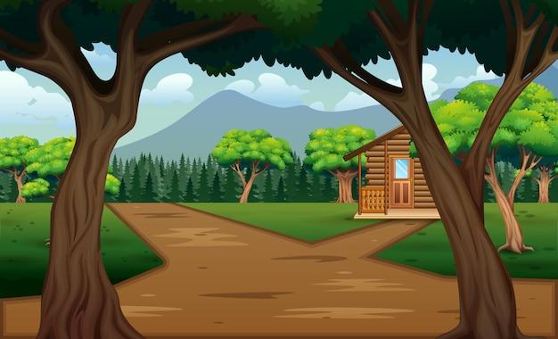 Escena de camino rural con una casa y naturaleza verde.