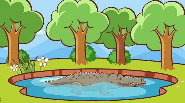 Escena con cocodrilo en el estanque ilustración
