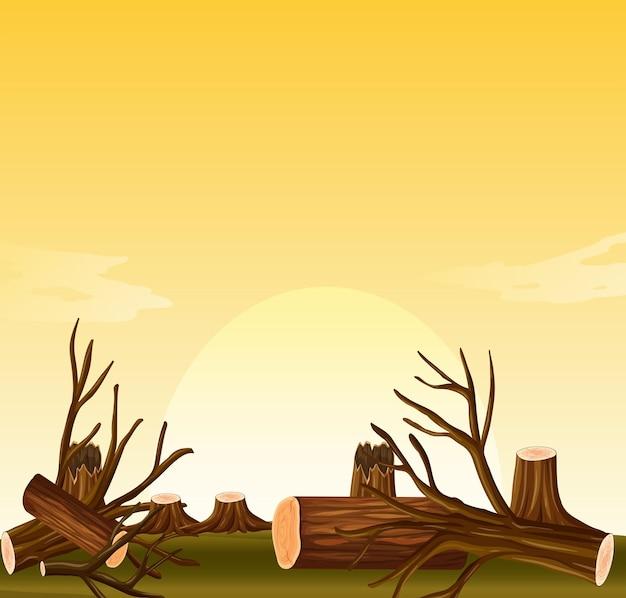 Escena de deforestación al atardecer.