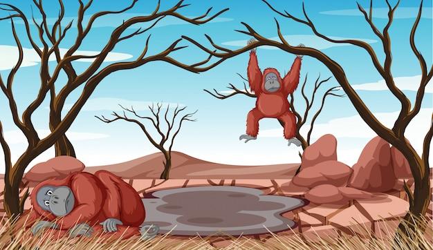 Escena de deforestación con dos monos