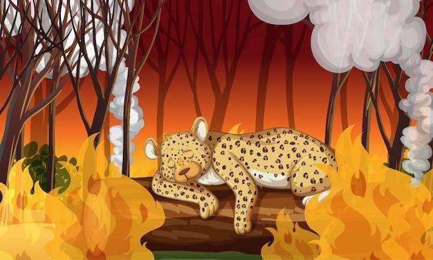 Escena de deforestación con guepardo muriendo en un incendio forestal