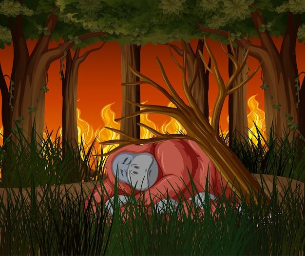 Escena de deforestación con mono muriendo de incendios forestales