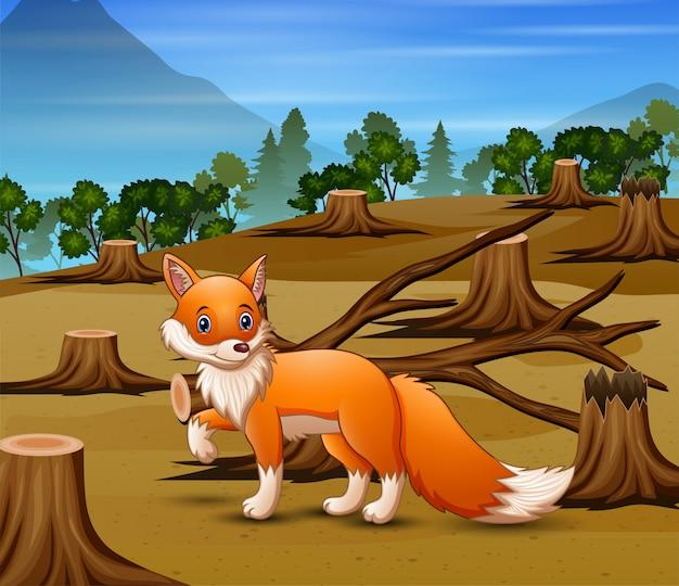 Escena de deforestación con zorro hambriento