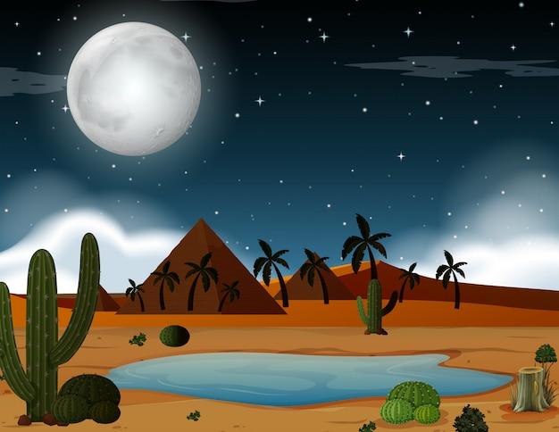 Una escena del desierto en la noche.