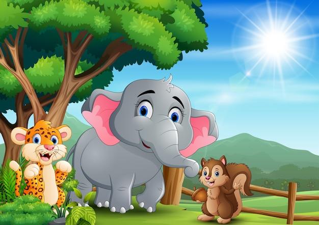 Escena con diferentes tipos de animales en el zoológico abierto.