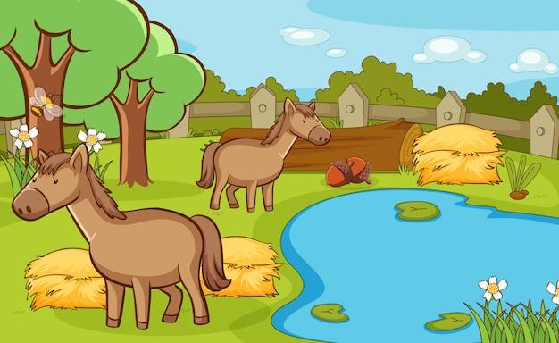 Escena con dos caballos en la granja.