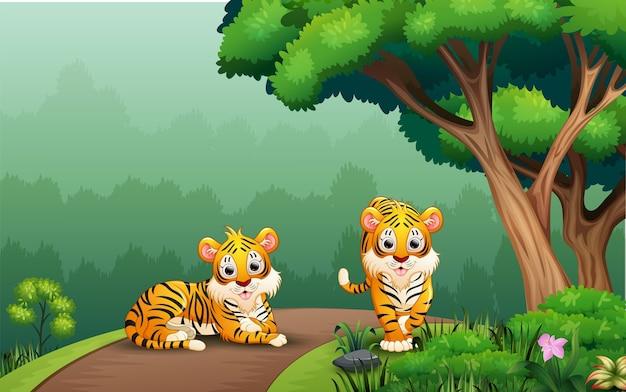 Escena con dos tigres en la carretera.