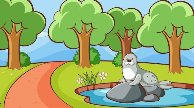 Escena con foca en el parque