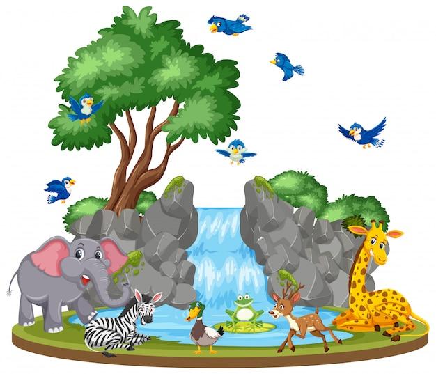 Escena de fondo de animales y cascada