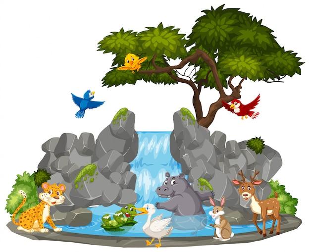 Escena de fondo de animales salvajes y cascada
