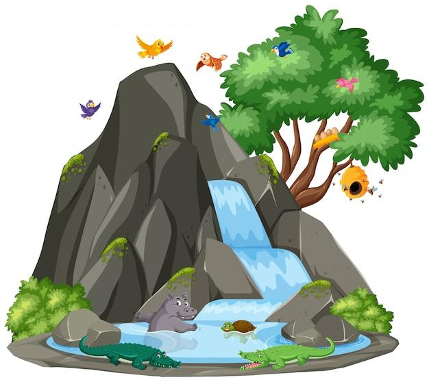 Escena de fondo de cascada y pájaros