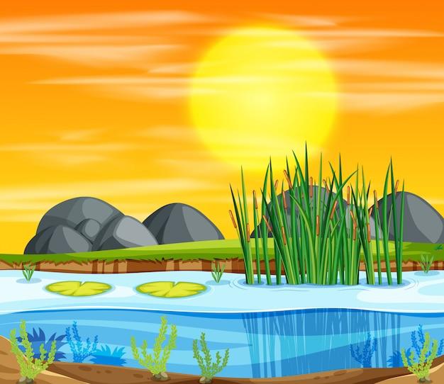Escena de fondo de estanque al atardecer