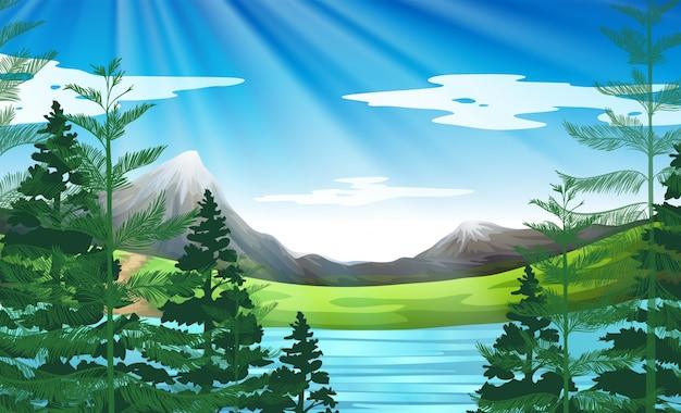 Escena de fondo del lago y bosque de pinos