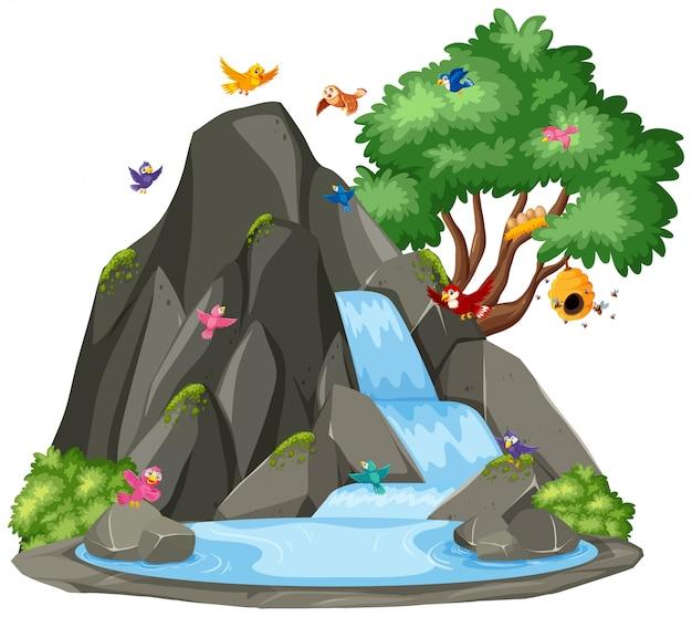Escena de fondo de pájaros junto a la cascada