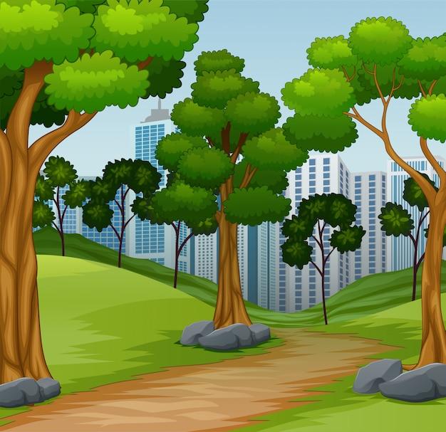 Escena forestal del camino a la ciudad.