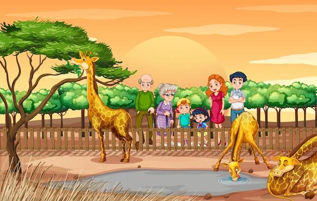 Escena con gente mirando jirafas en el zoológico