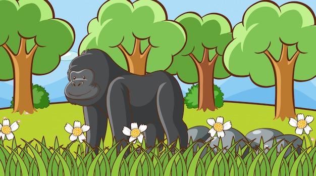 Escena con gorila en el bosque