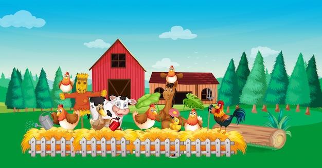 Escena de granja con estilo de dibujos animados de granja de animales