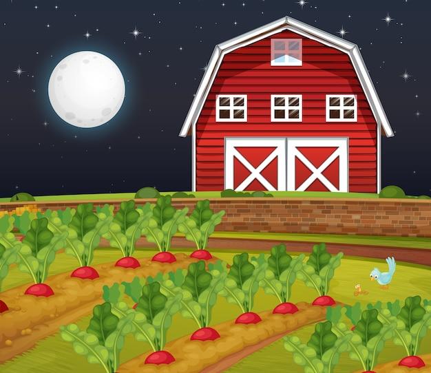 Escena de la granja con granero y granja de zanahorias en la noche.