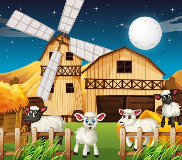 Escena de granja con granero y oveja bonita en la noche