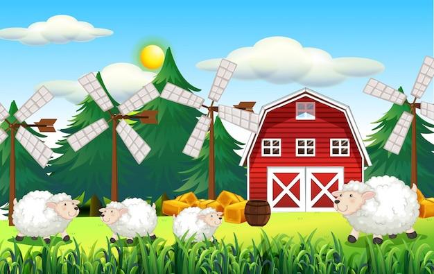 Escena de la granja con granero y oveja bonita
