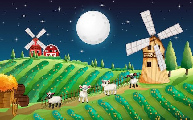 Escena de la granja con lindas ovejas y molino en la noche