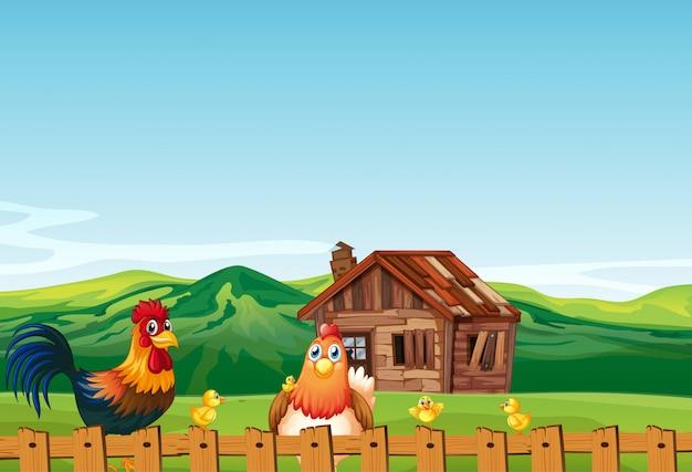 Escena de la granja en la naturaleza con granero y pollo
