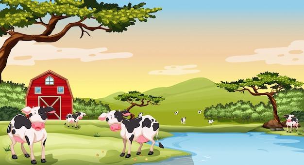 Escena de la granja con vacas