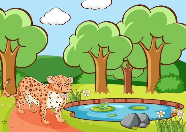 Escena con guepardo en bosque