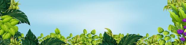 Escena con hojas verdes en el jardín.