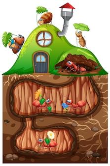 Escena con hormigas viviendo bajo tierra en el jardín.