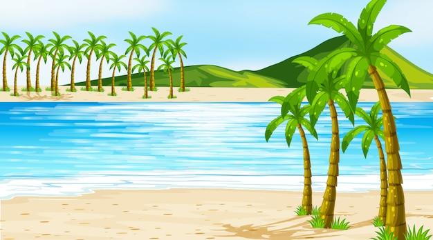 Escena de ilustración con cocoteros en la playa