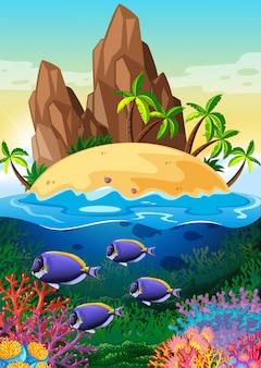 Escena con isla y vida bajo el agua.