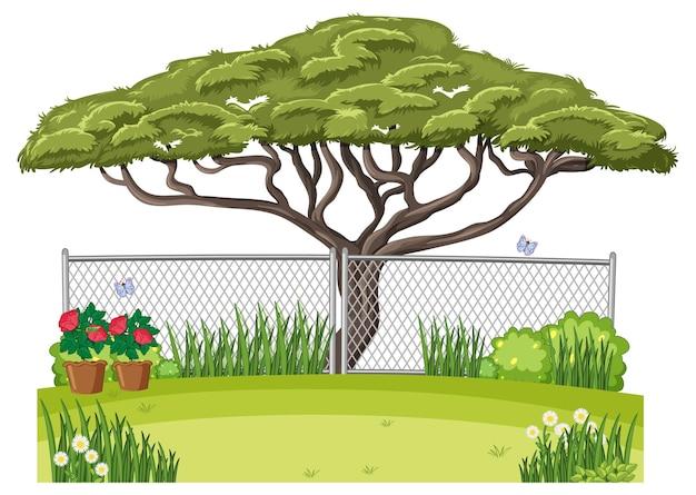 Una escena de jardín al aire libre.