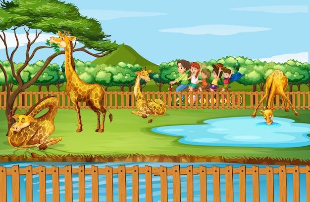 Escena con jirafas y gente en el zoológico.