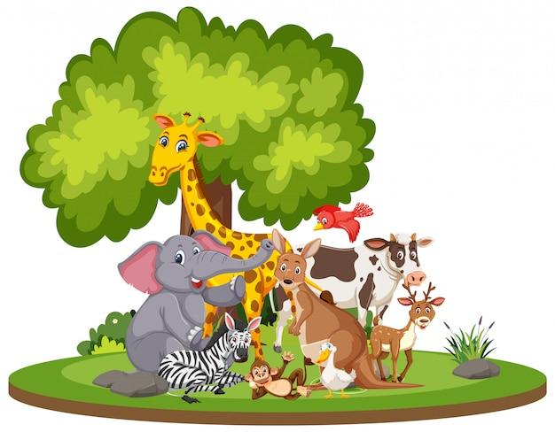 Escena con lindos animales en el parque