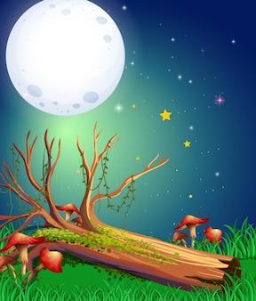 Escena con luna llena sobre el jardín.